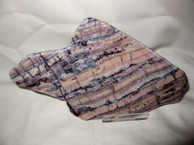 "Precambrian Age Fossil ""Butterscotch Ripple"" Stromatolite from Chocolay Hiils Michigan"