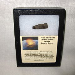 Genuine Impact Jurassic Belemnite From The Miocene Age Reis Meteor Impact Crater in Bavaria Germany