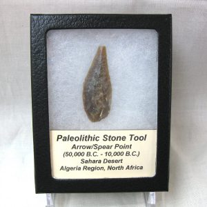 Genuine Paleolithic Age Stone Tool from the Algerian Region of North Africa