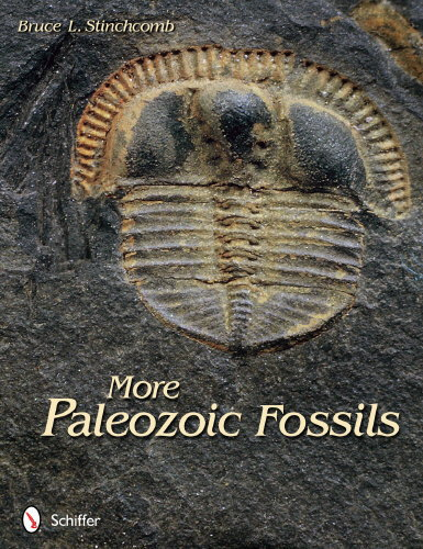 More Paleozoic Fossils